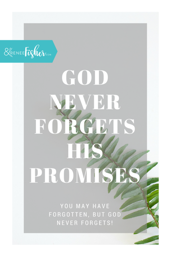God Never Forgets His Promises