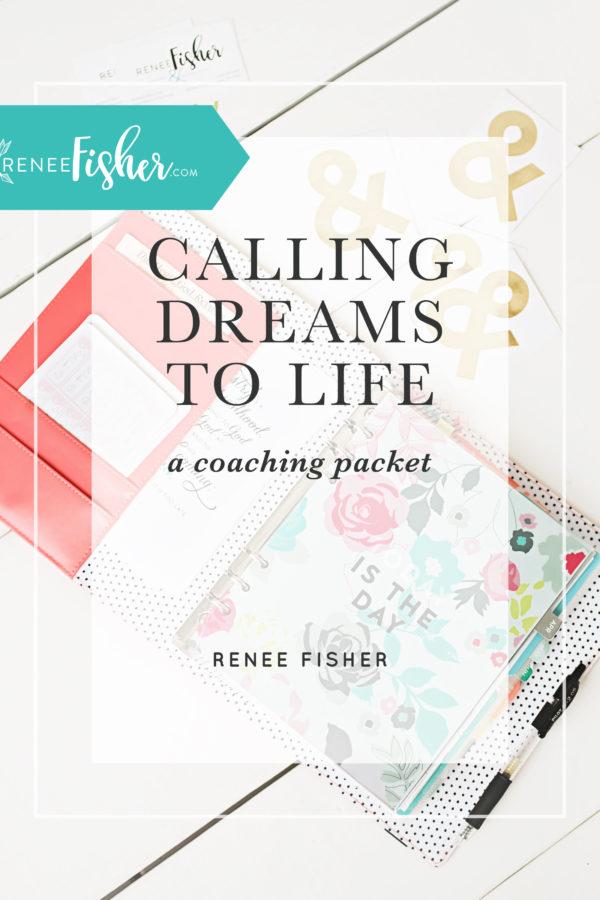 2017 Dream Coaching Flash Sale